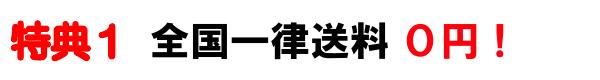 特典1 全国一律送料0円